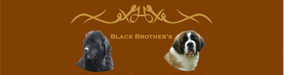 Black-brothers